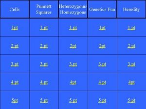 Cells Punnett Squares Heterozygous Genetics Fun Homozygous 1