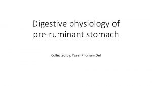 Digestive physiology of preruminant stomach Collected by Yaser