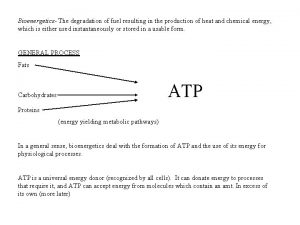 Bioenergetics The degradation of fuel resulting in the