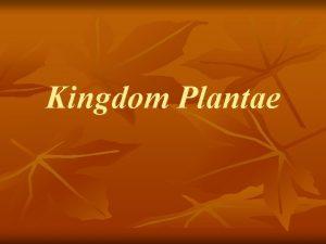Kingdom Plantae Kingdom Plantae n n Evidence suggests