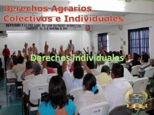 Derechos Agrarios Colectivos e Individuales Derechos Individuales De