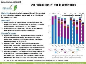 BRC Science Highlight An ideal lignin for biorefineries