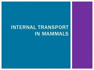 INTERNAL TRANSPORT IN MAMMALS INTERNAL TRANSPORT IN MAMMALS