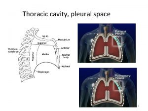 Thoracic cavity pleural space 1 Conditions requiring chest