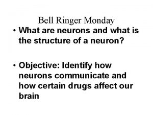 Bell Ringer Monday What are neurons and what