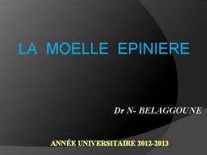LA MOELLE EPINIERE Dr N BELAGGOUNE ANNE UNIVERSITAIRE