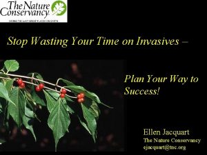 Stop Wasting Your Time on Invasives Plan Your