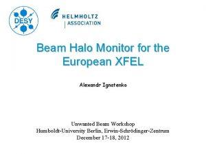 Beam Halo Monitor for the European XFEL Alexandr