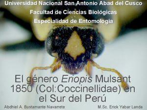 Universidad Nacional San Antonio Abad del Cusco Facultad