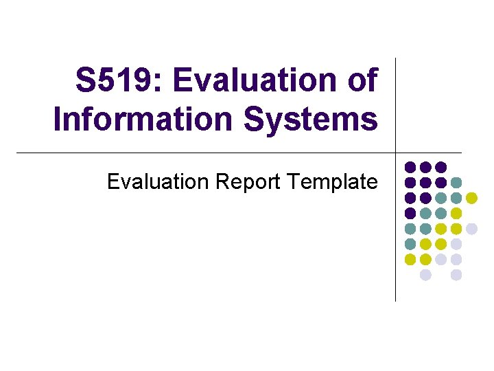 S 519 Evaluation of Information Systems Evaluation Report
