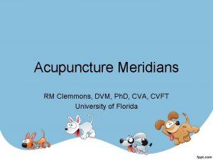 Acupuncture Meridians RM Clemmons DVM Ph D CVA