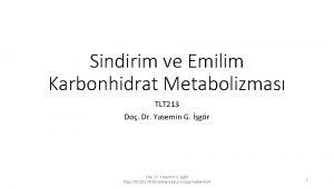 Sindirim ve Emilim Karbonhidrat Metabolizmas TLT 213 Do