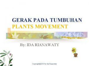 GERAK PADA TUMBUHAN PLANTS MOVEMENT By IDA RIANAWATY