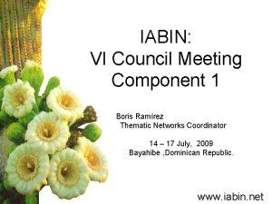 IABIN VI Council Meeting Component 1 Boris Ramrez