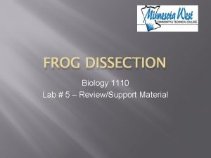 FROG DISSECTION Biology 1110 Lab 5 ReviewSupport Material