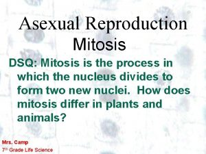 Asexual Reproduction Mitosis DSQ Mitosis is the process