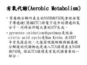 glyoxylate cycle Oxidative phosphorylation Oxidative phosphorylation Electrotransfer reaction