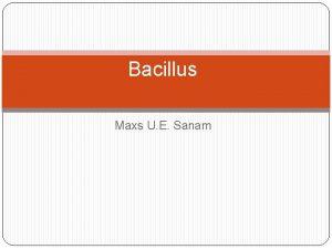 Bacillus Maxs U E Sanam Anthrax Introduction Anthrax