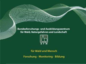 Schwarzes C SchmetterlingsraupenProjekt Christian Lackner Sparkling ScienceProjekt Wien