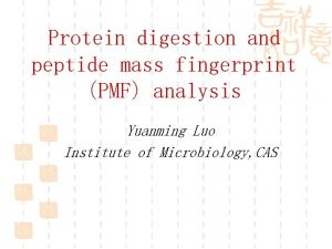 Protein digestion and peptide mass fingerprint PMF analysis