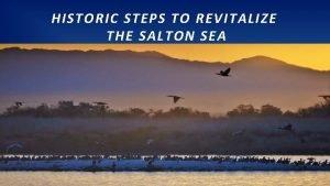 HISTORIC STEPS TO REVITALIZE THE SALTON SEA SALTON