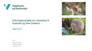 Informasjonsmte om utveksling til Australia og New Zealand