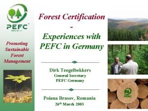 PEFC04 1 1 Promoting Sustainable Forest Management Forest
