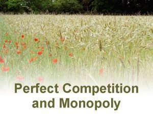 Perfect Competition and Monopoly Perfect Competition and Monopoly