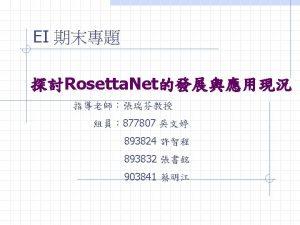 Rosetta Net Focus Rosetta Net PIP Cluster Segment