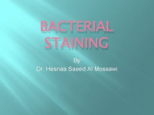 BACTERIAL STAINING By Dr Hesnaa Saeed Al Mossawi