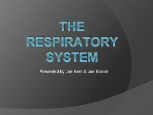 THE RESPIRATORY SYSTEM Presented by Joe Kern Joe