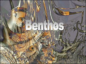Benthos Intertidal Zone Muddy bottom and sandy bottom