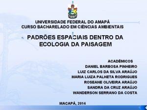 UNIVERSIDADE FEDERAL DO AMAP CURSO BACHARELADO EM CINCIAS
