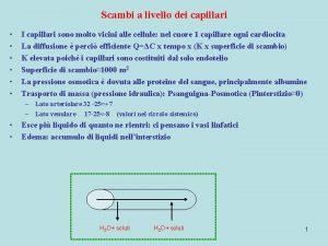 Scambi a livello dei capillari I capillari sono