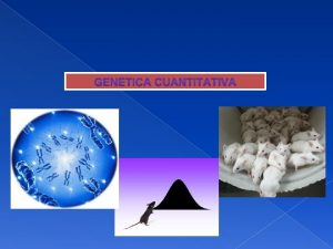 GENTICA CUANTITATIVA Gentica cualitativa 1 Caracteres de clase