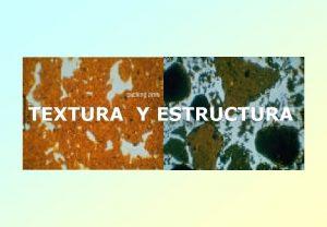TEXTURA Y ESTRUCTURA TEXTURA Y ESTRUCTURA Textura Superficie