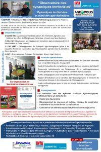 Observatoire des dynamiques territoriales Dynamiques territoriales et transition