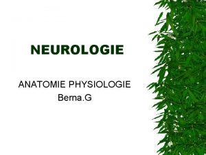 NEUROLOGIE ANATOMIE PHYSIOLOGIE Berna G INTRODUCTION Dfinitions Neurologie