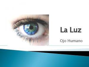 La Luz Ojo Humano Ojo Humano y su