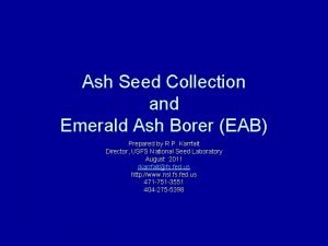Ash Seed Collection and Emerald Ash Borer EAB