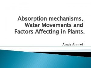 Absorption mechanisms Water Movements and Factors Affecting in