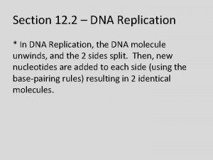 Section 12 2 DNA Replication In DNA Replication