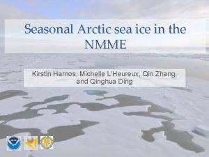 Seasonal Arctic sea ice in the NMME Kirstin