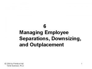 6 Managing Employee Separations Downsizing and Outplacement 2004