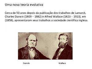 Uma nova teoria evolutiva Cerca de 50 anos