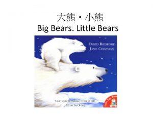Big Bears Little Bears Seattle public Library CEN