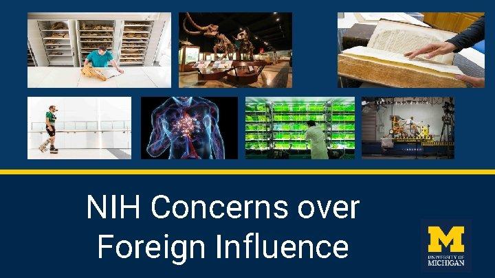 NIH Concerns over Foreign Influence NIH Concerns Based