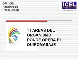 CFT ICEL Masoterapia Introduccin 11 AREAS DEL ORGANISMO