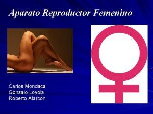 Aparato Reproductor Femenino Carlos Mondaca Gonzalo Loyola Roberto