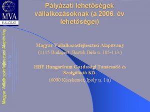 Plyzati lehetsgek vllalkozsoknak a 2006 v lehetsgei Magyar
